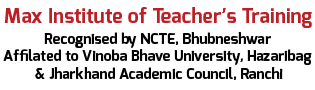 Max Teachers Institute